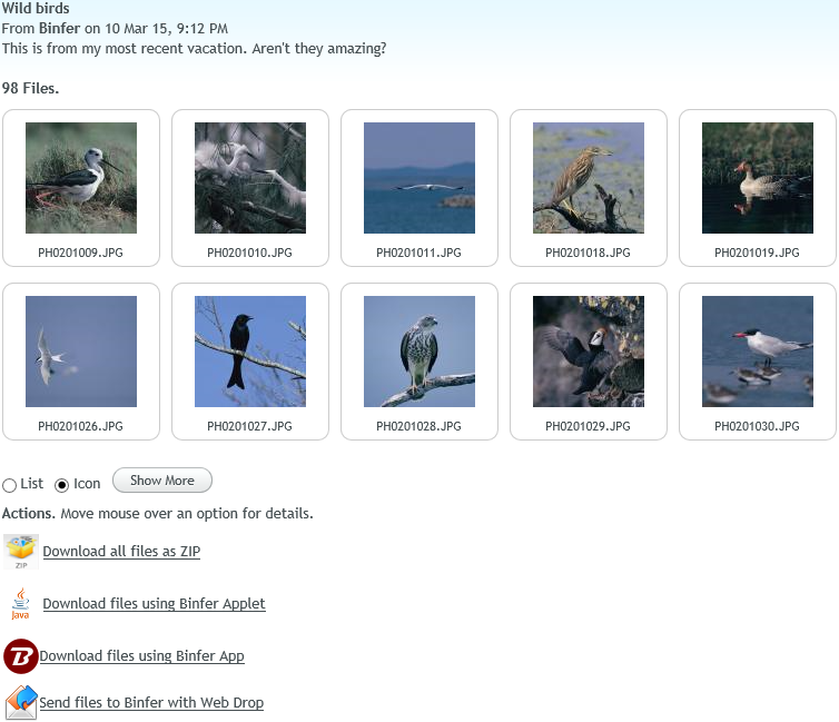 binfer-receive-files-thumbnails