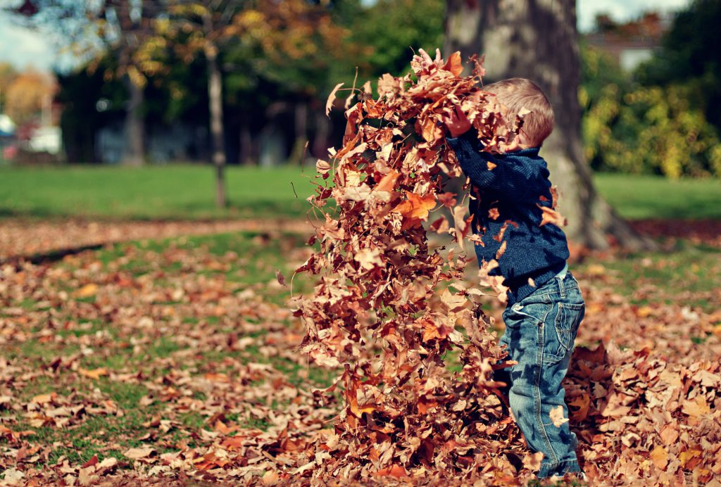 Little boy playing